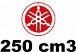250 cm3