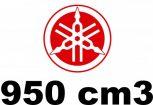 950 cm3